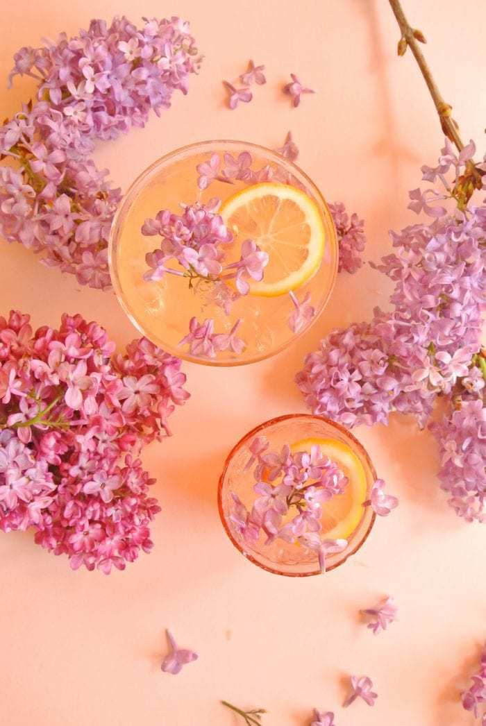 Lilac flower cocktail