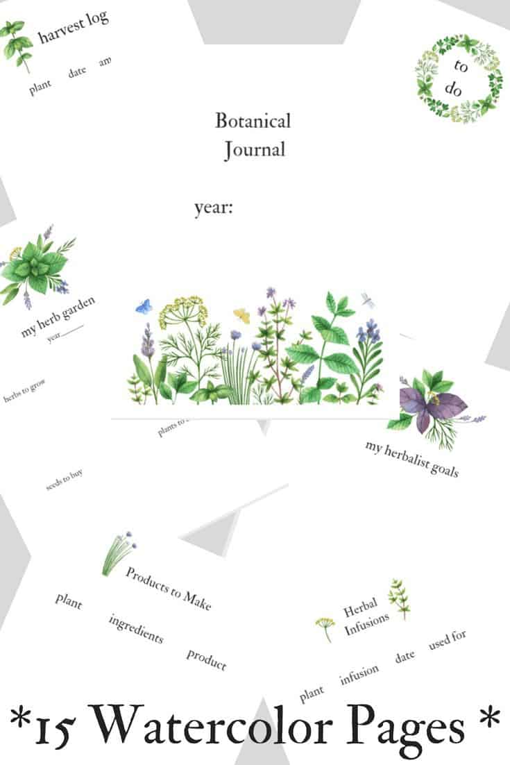 Watercolor herbalist planner