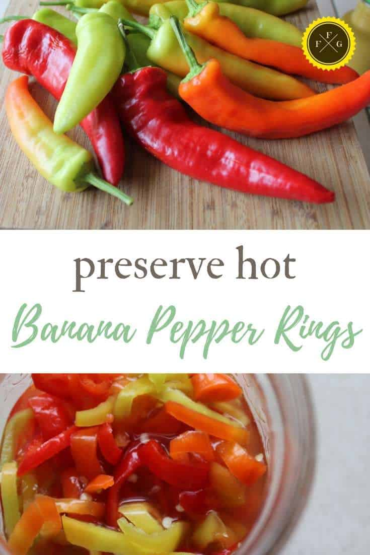 Preserve hot banana pepper rings