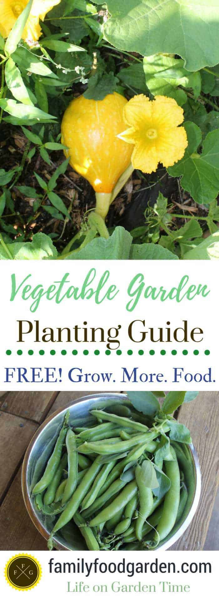 FREE vegetable garden planting guide