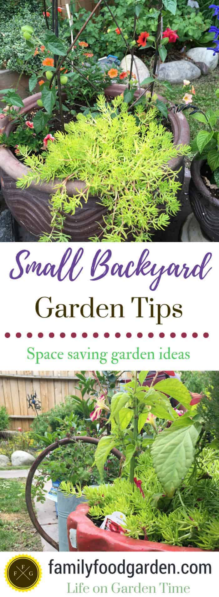 Small Backyard Garden Ideas & Tips ~Family Food Garden