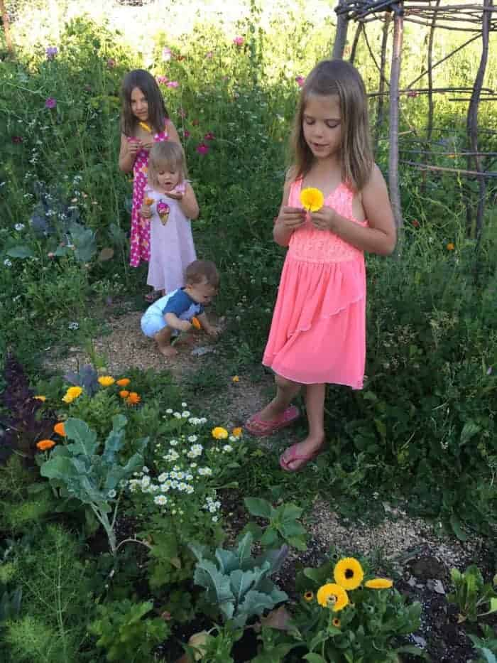 Kids gardening tips and plants to grow