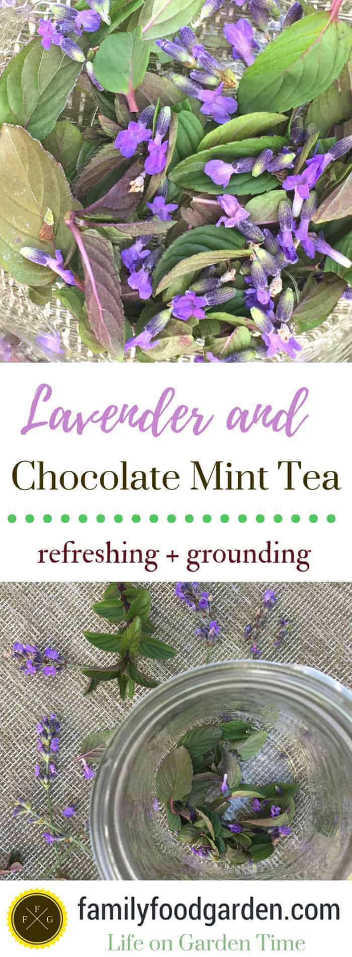Lavender and chocolate mint tea