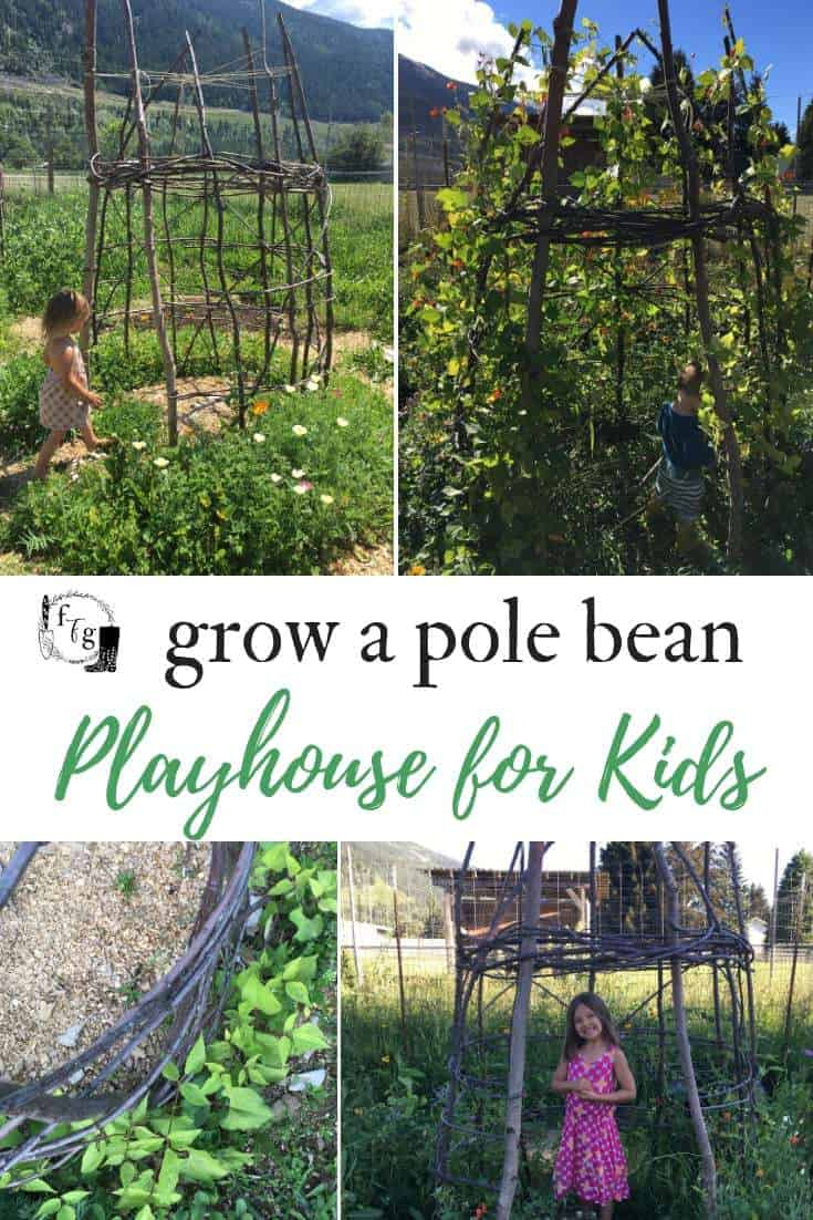 Grow a kids bean house for a fun playhouse