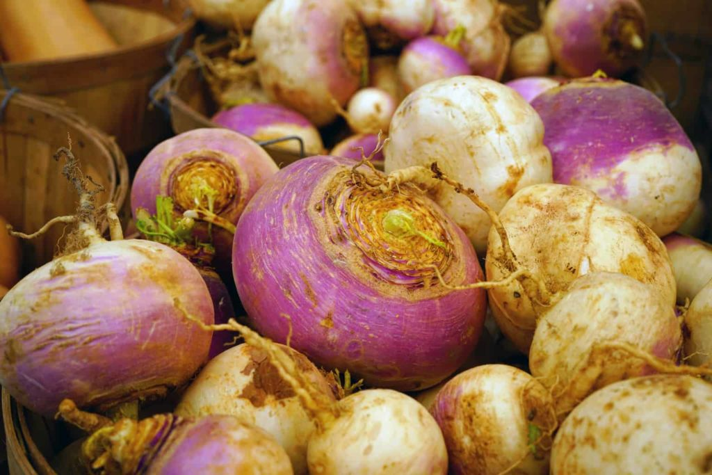 heirloom turnips