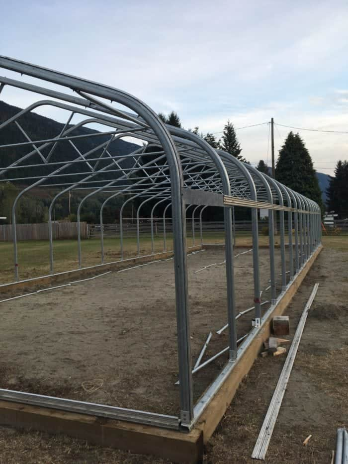 The homestead greenhouse is an expensive project to build, Figure out your budget and homestead goals