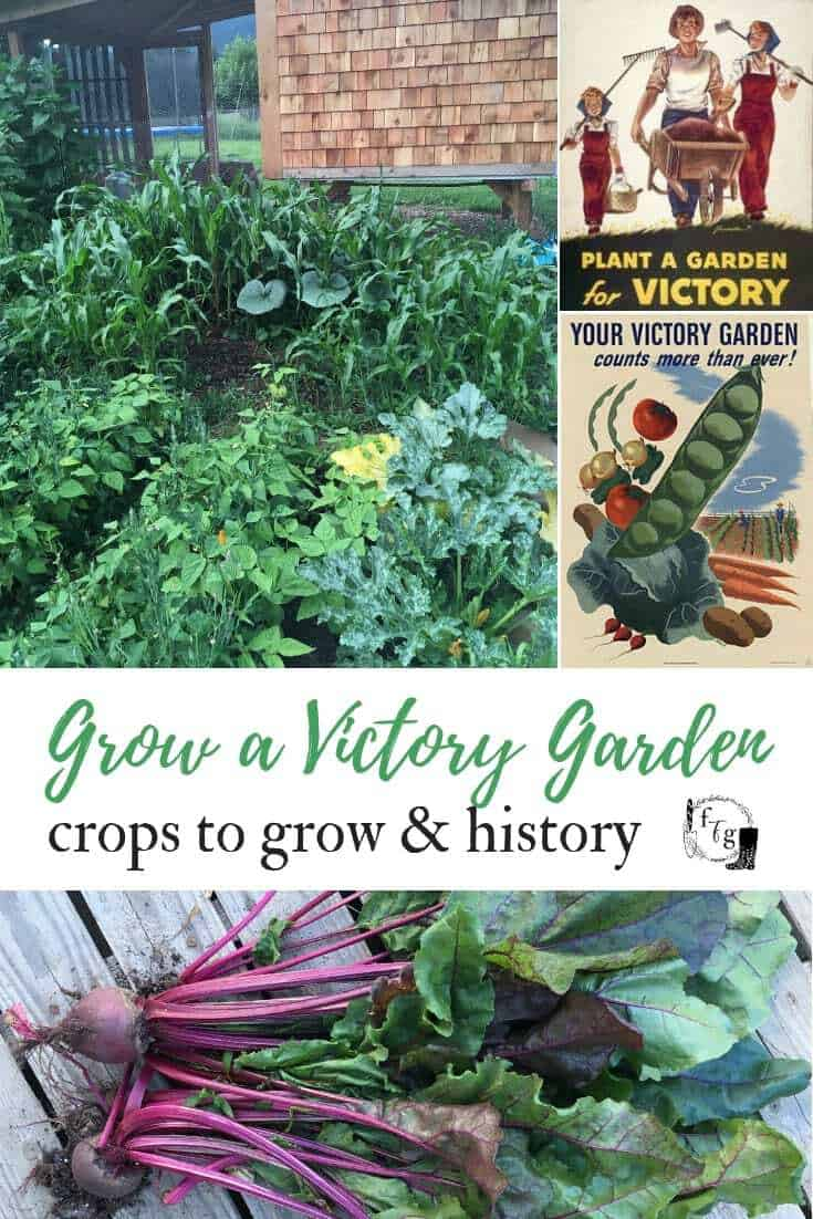 Grow a modern victory garden with these designs & crop lists #victorygarden #victorygardens #victorygardening #wargardens #selfsufficient #homestead #gardenplanning