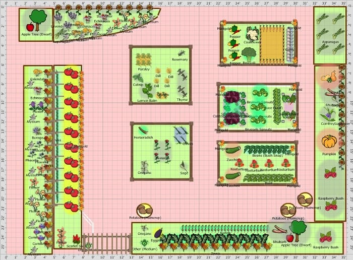 Vegetable Garden Plans, Designs + Layout Ideas | Family ...