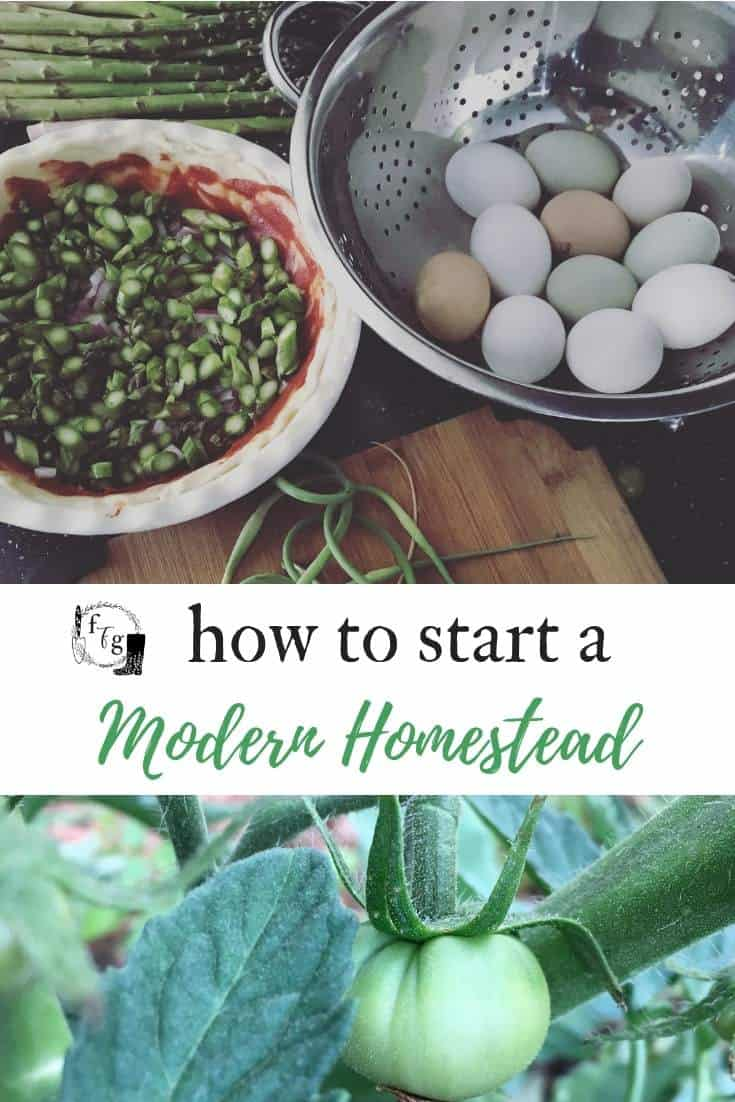 How to start a modern homestead