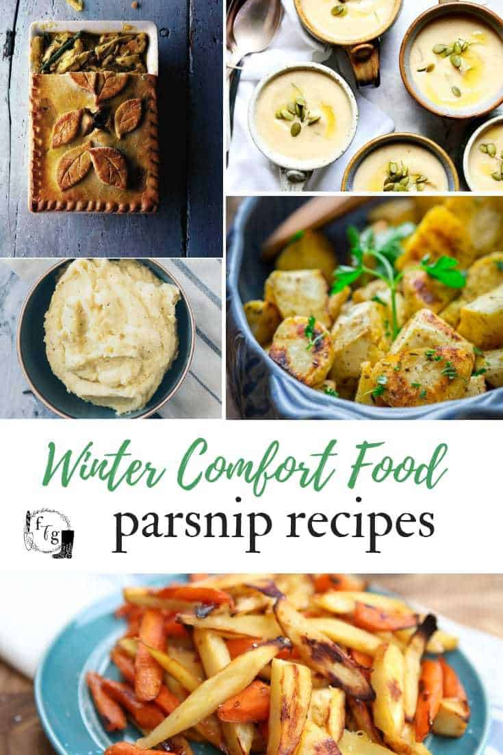 Parsnip recipes such as honey roasted parsnips or parsnip pie