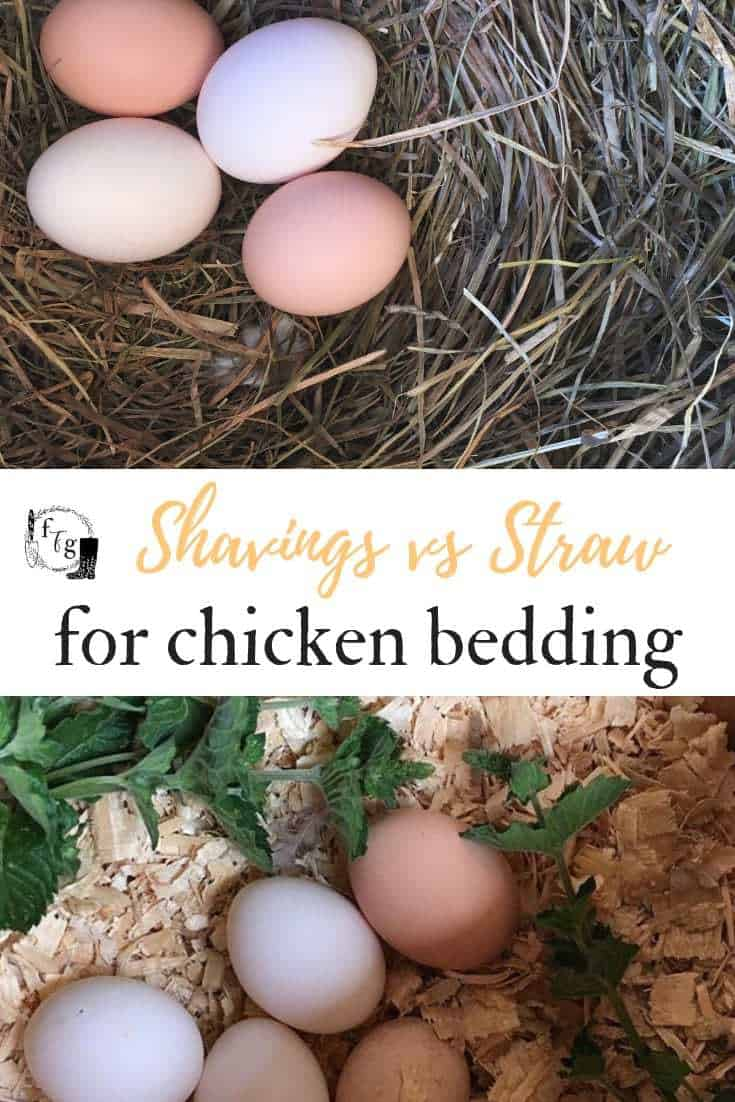 Best chicken bedding for a chicken coop
