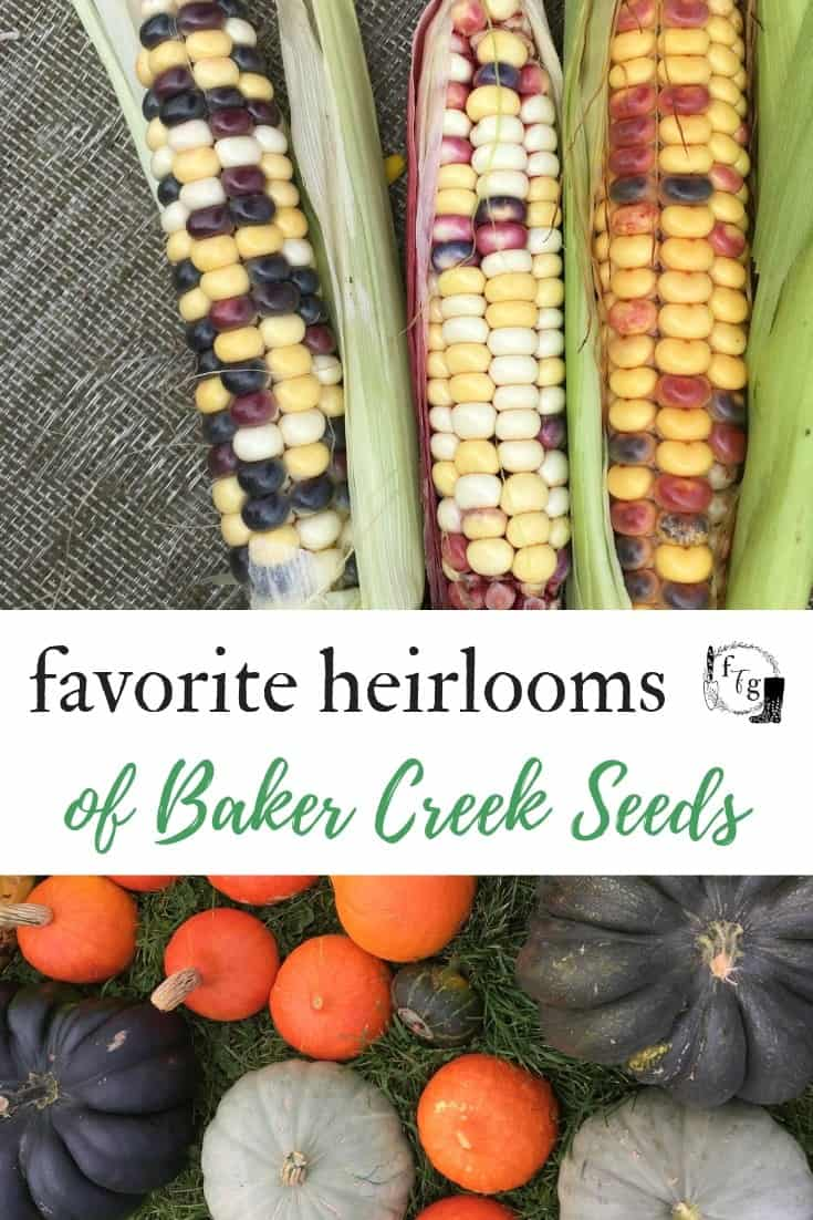 Fav Baker Creek Seeds for Heirloom Gardening