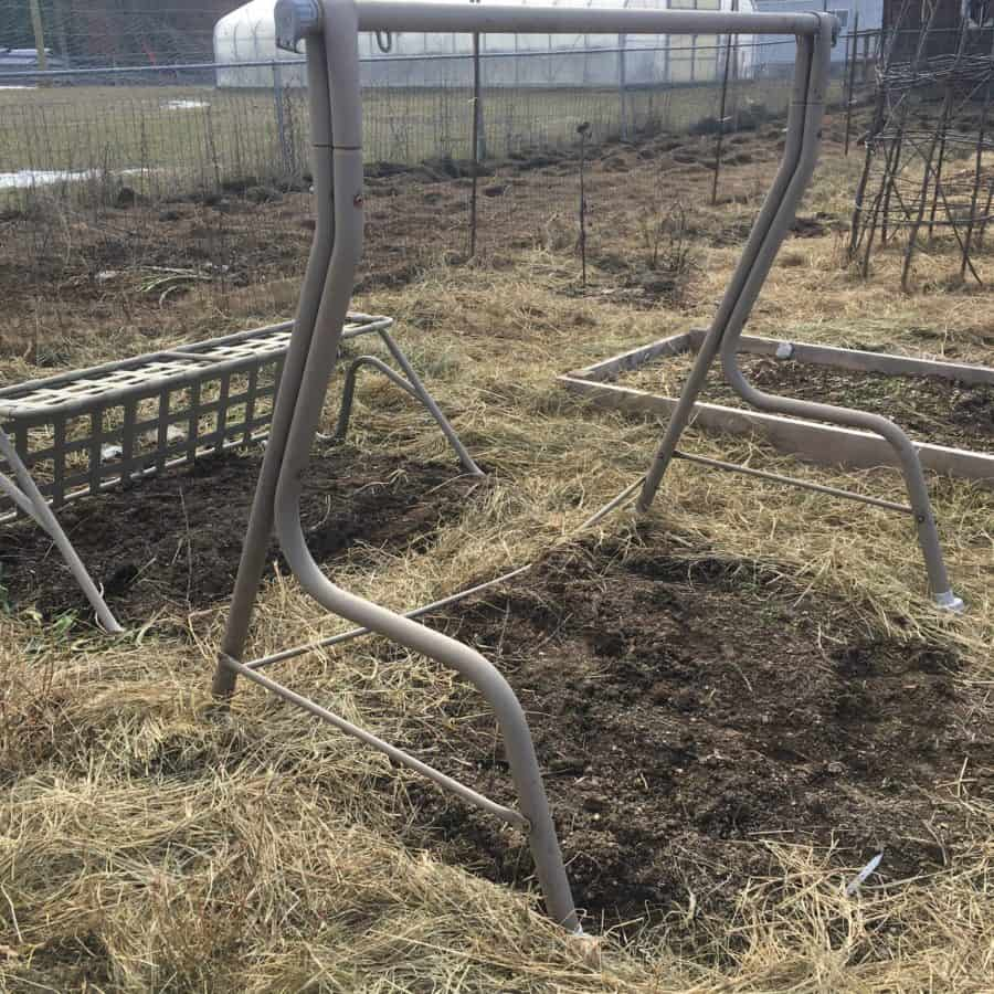 Re-purposed old swing set into 2 garden trellises for cucumbers and pole beans