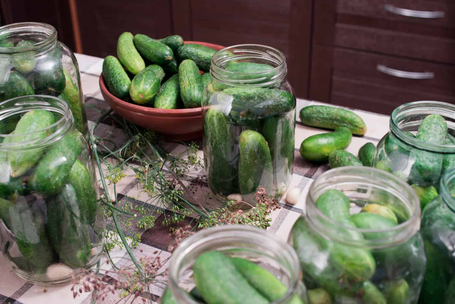 Cucumber Canning Recipes