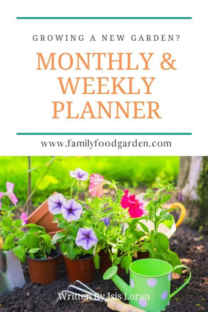 monthly and weekly planner