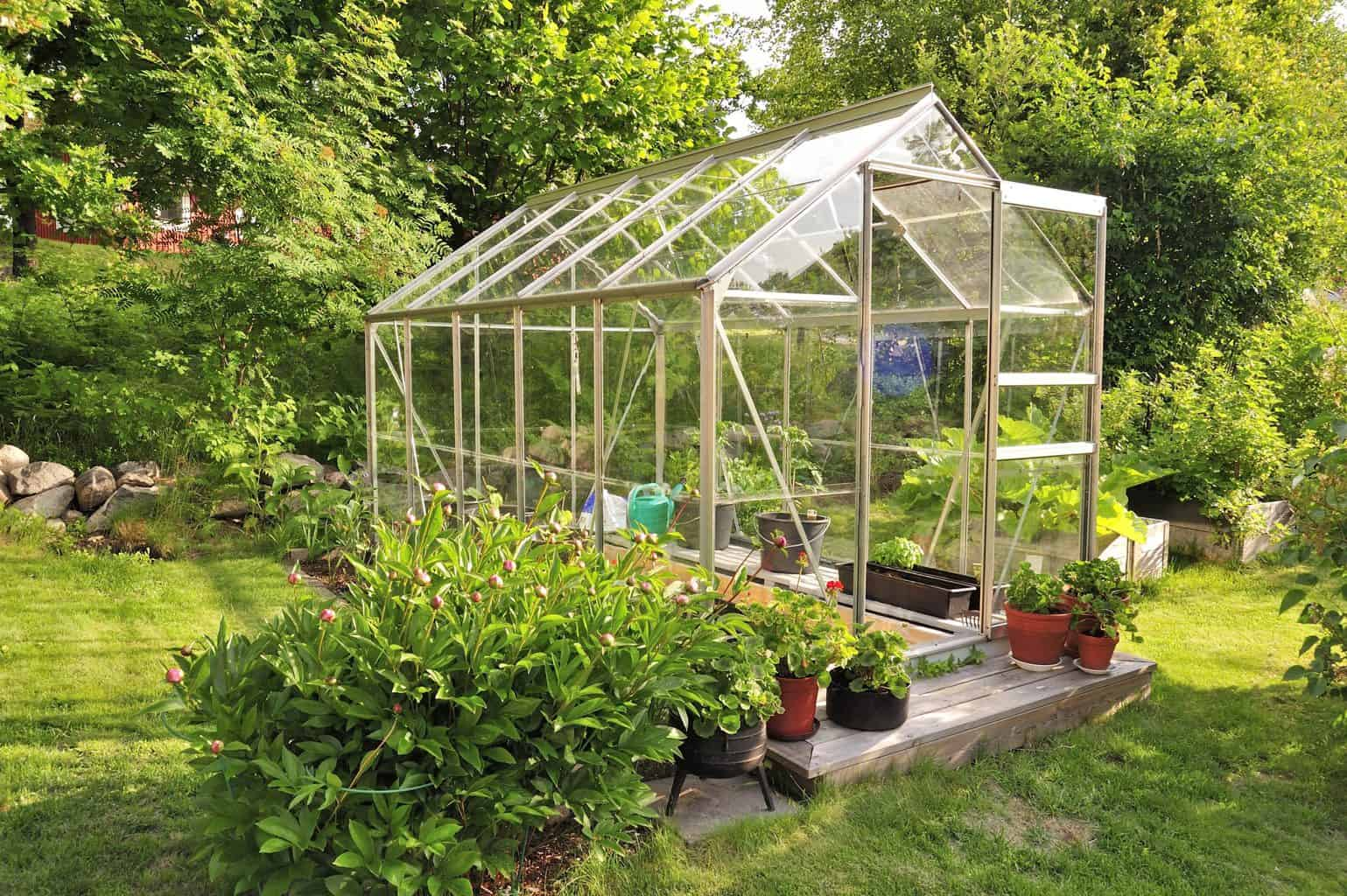 How To Keep Your Greenhouse Cool in the Summer