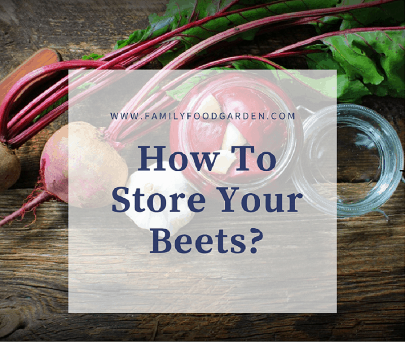 best way to store beets