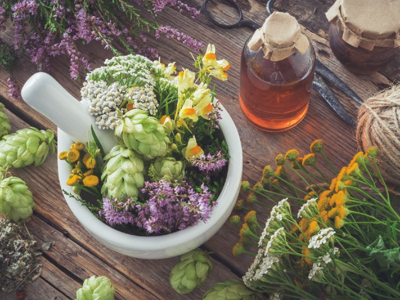 what herbs are good for anxiety