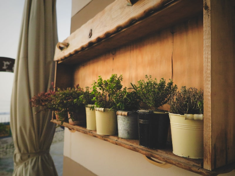 growing herbs indoors without sunlight